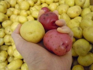 Winning Shot-potatoes-smaller
