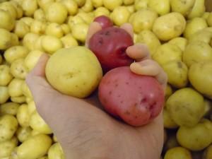 Winning Shot-potatoes-smaller