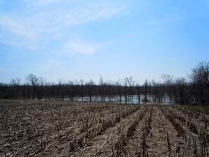 The Grand River flows about 300 yards south of Eastmanville Farm. During April's intense flooding, that distance got a little bit shorter.