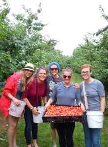 Staff from Terra GR Restaurant pick cherries for Feeding America West Michigan, July 17, 2015.