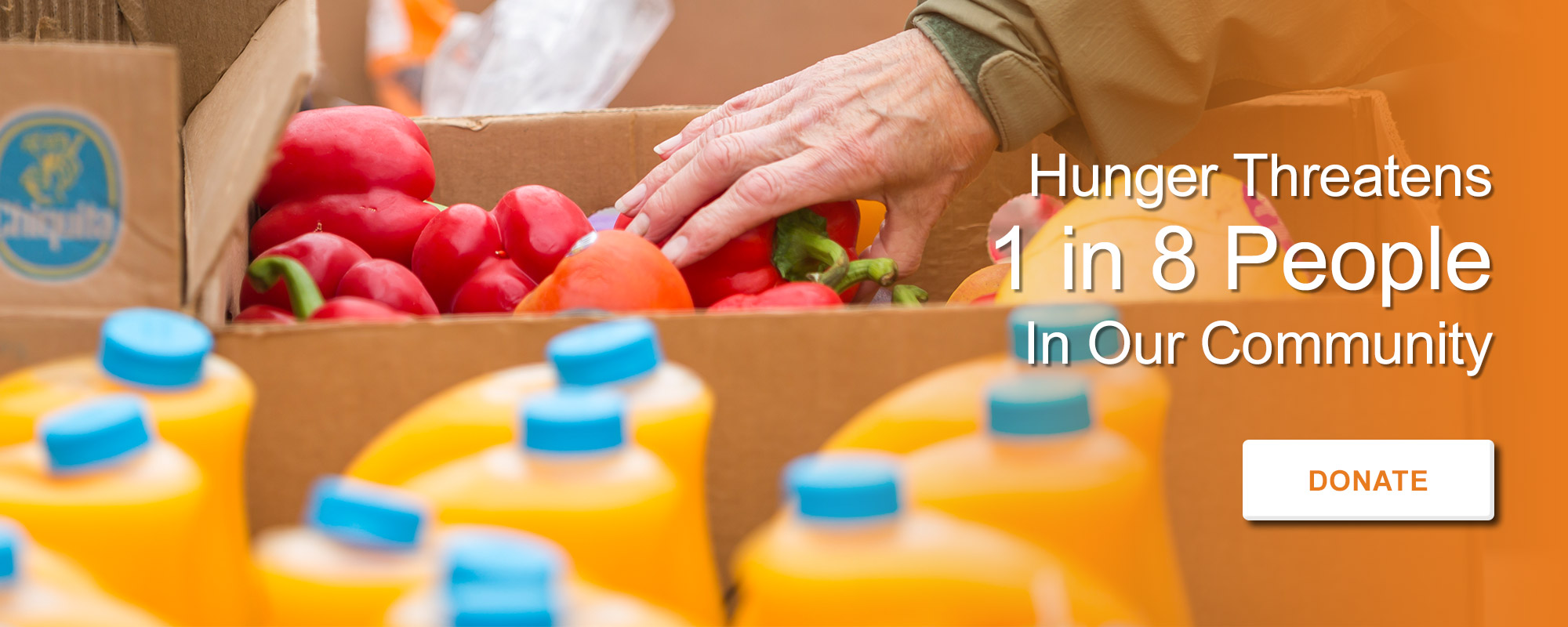 Hunger Threatens 1 in 8 people in our community. Donate Today.