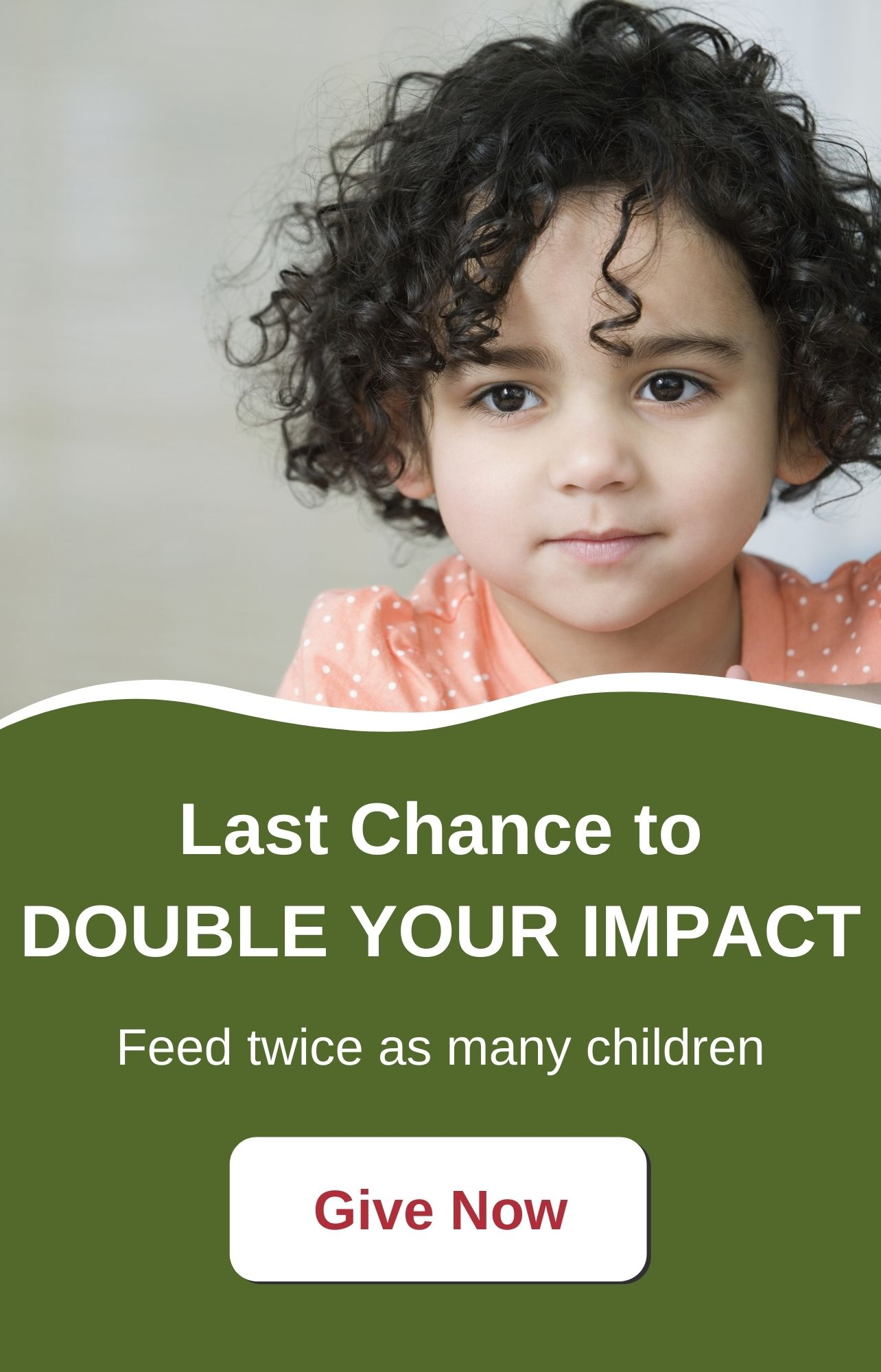 Last Chance to DOUBLE YOUR IMPACT